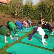 Auch eine Yoga-Sequenz sorgte für die nötige Lockerung und Kräftigung der Muskeln.